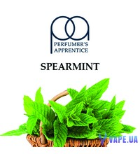 TPA/TFA - Spearmint (Мята), 50 мл